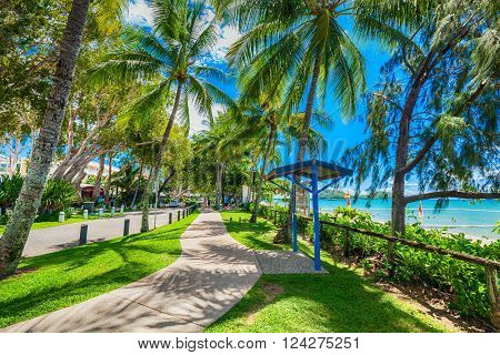 PALM COVE, AUSTRALIA - 28 MARCH 2016. The Esplanade in Palm Cove with palm trees, road and beach, Australia. Palm Cove is popular tourist destination in tropical north Queensland.