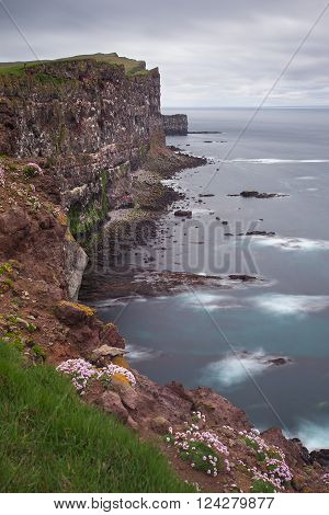 Latrabjarg is Europe's  largest bird cliff. Westfjords, Iceland