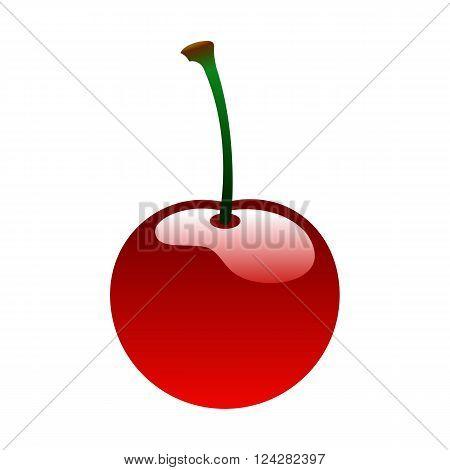 Ripe red cherry berrie food bio set