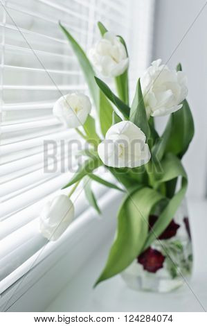 A bouquet of white tulips standing on the window sill