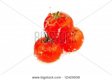 Tomatoes With Splashes Of Water Isolated On White