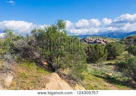 Mojave Desert wilderness outside Santa Clarita California.