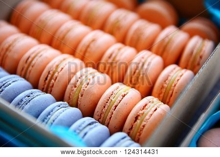 Varicolored tasty macaroons in a box, close up