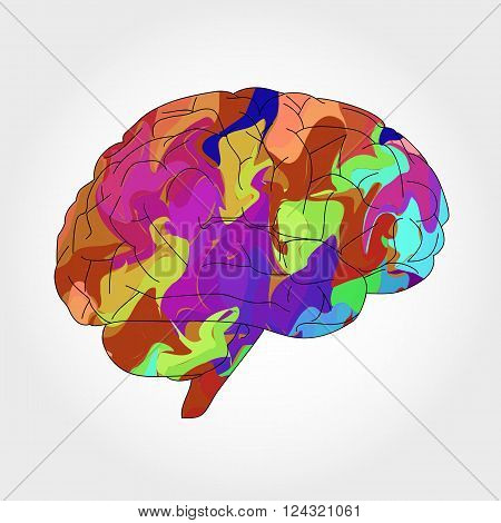 abstract multicolored human brain, psychedelic brain illustration