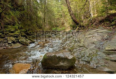 The mountain river near Yaremche. Carpathians mountains in Ukraine