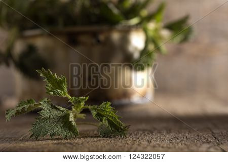 Raw stinging nettles leaf on kitchen rustic table background