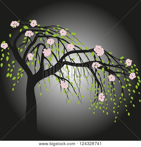 Blooming tree on black-white background, vector illustration