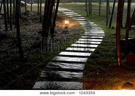 Stone Road In Garden