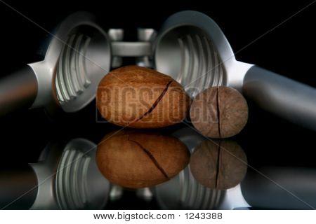 Walnuts And Nutcracker