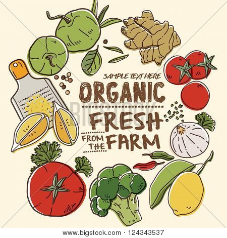 Fresh organic farm vegetables