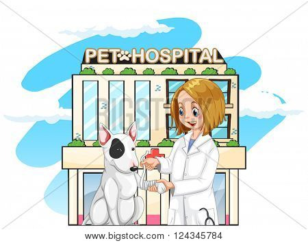 Vet and pet dog at the pet hospital illustration