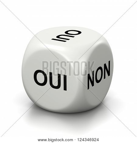 One Single White Dice with Yes or No French Text on Faces on White Background 3D Illustration