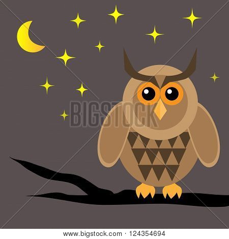Horned owl on brown dried branch. Night moon star. Dark background.