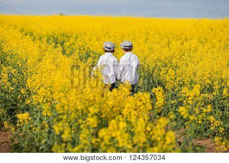 Adorable Little Boy, Standing In Yellow Oilseed Rape Field, Backwards