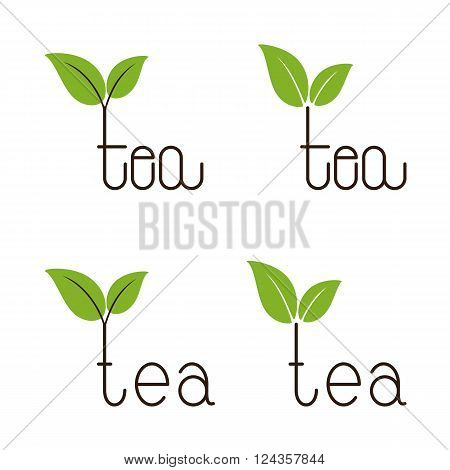 Set of brown colored tea lettering with two green leaves over letter t isolated on white background. Logo template design element menu decoration