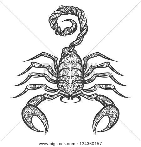 Vector scorpion zentangle. Hand drawn scorpion with floral ornament. Vector icon