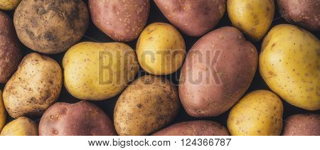 Raw potatoes background wide screen letterbox format