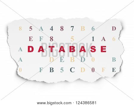 Database concept: Database on Torn Paper background