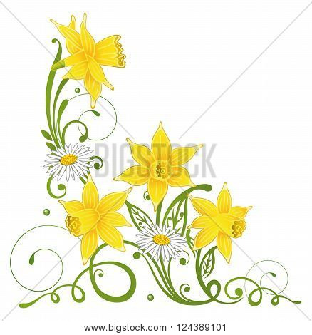 Spring time flowers with daffodils and daisy.