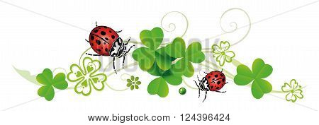 Clover tendril with butterflies. Silvester decoration with realistic shamrocks.