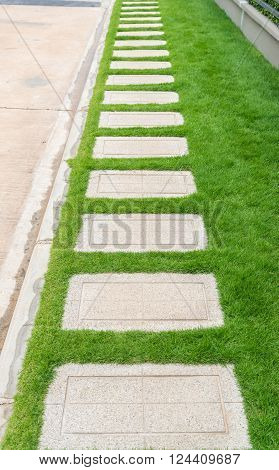 Stone walkway with green grass in the garden