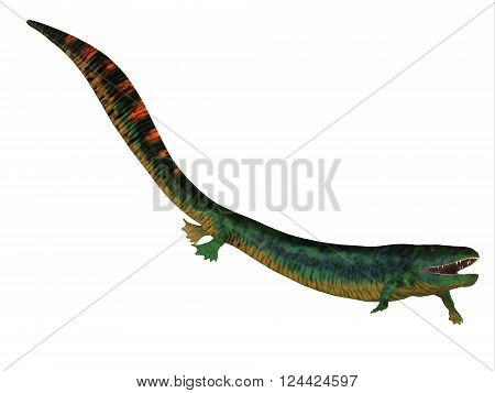 Eogyrinus Tetrapod Side Profile 3D illustration - Eogyrinus was an aquatic predatory tetrapod that lived in the Carboniferous Period of England.