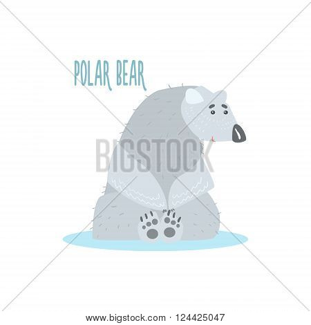 Polar Bear Drawing For Arctic Animals Collection Of Flat Vector Illustration In Creative Style On White Background