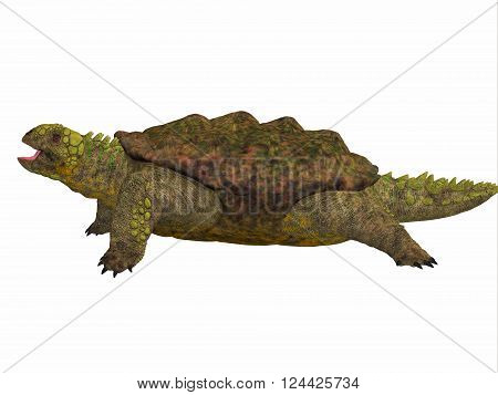 Proganochelys Side Profile 3D illustration - Proganochelys is the second oldest turtle species discovered and lived in Germany and Thailand in the Triassic Period.