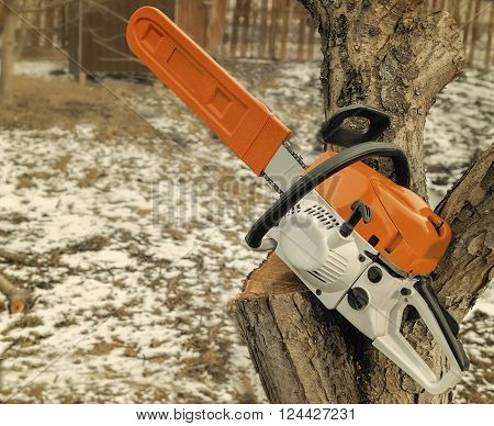 .On one of the branches of felled trees is a modern and powerful chainsaw.