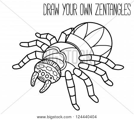 Cute spider. Vector illustration of cute ornate zentangle spider for children or for adult anti stress coloring book