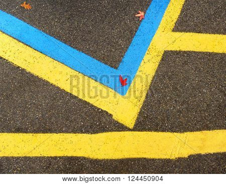 Adjacent blue and yellow lines in a parking lot in the fall.