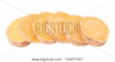 Multiple slice sections of the sweet potato or Ipomoea batatas aligned in a line, composition isolated over the white background