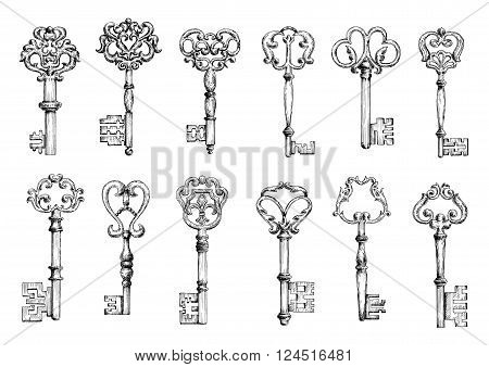 Vintage sketches of medieval door keys adorned by forged floral motifs with decorative elements. Decoration, embellishment, security or safety theme design
