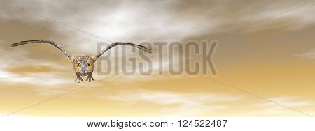 Brown owl flying in the sky by sunset - 3D render
