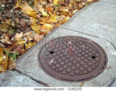 Drain Cover And Autumn Leaves