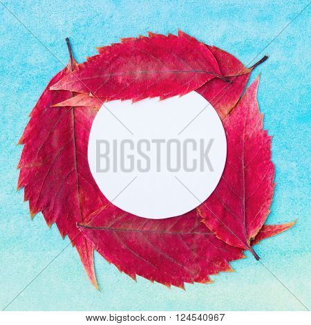 Paper circle on abstract watercolor background and dry pressed leaves, colorful template, herbarium. Template with pressed dry leaves and paper circle. Artistic original background with place for text