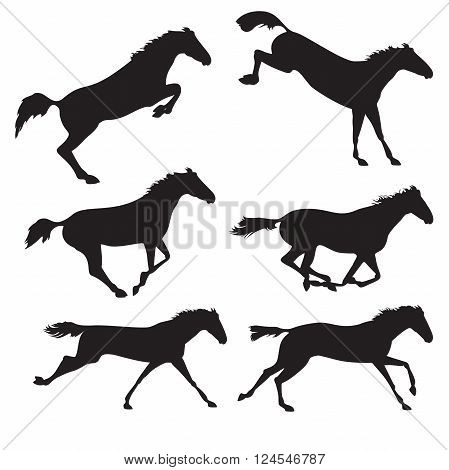 Horse realistic image. Silhouettes of horses. Black horses on isolated background. Set of wild horses. Vector horse collection