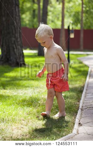 Portrait of blonde baby boy in red shorts walking in summer park