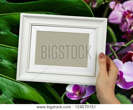 Wooden frame in beautiful woman hands on the background closeup of orchid flower