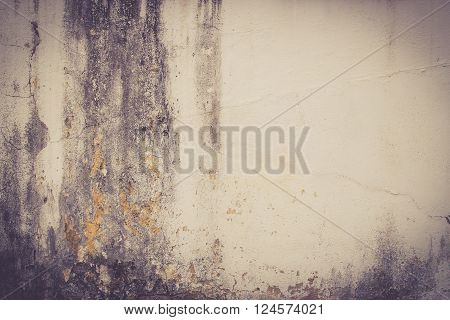 hi res grunge cement texture and old background for design - vintage tone