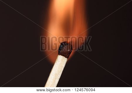 burning match / match in the initial moment of ignition