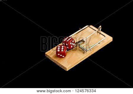 Dice on mouse trap