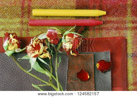 color yellow and red  harmonisation for interior