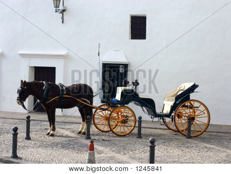 Horse And Carriage In Ronda
