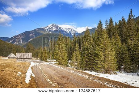 Wooden Huts By A Dirt Road In Tatra Mountains.