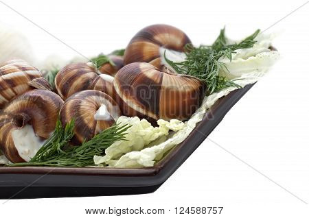 Boiled big grape snails in garlick sauce