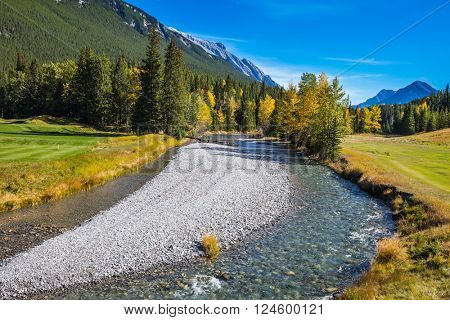 Delightful stunning park Banff in the Rocky Mountains of Canada. The shallow stream among green and yellow grass lawns