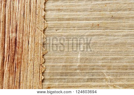 Texture of papyrus macro photo. The horizontal and vertical bars.