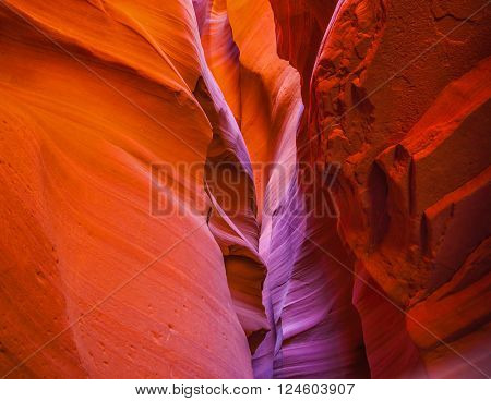 Phenomenal red and purple hues slot canyon Antelope.  Arizona, USA. Upper Antelope Canyon in the Navajo reservation