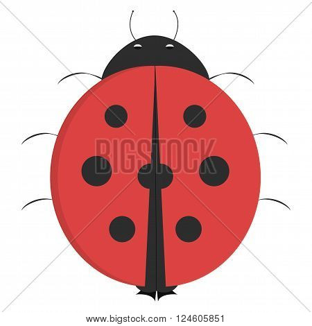 Cartoon ladybug illustrated ladybug isolated on white background before takeoff